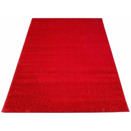 Dywan dywanik wycieraczka 50 x 70 cm