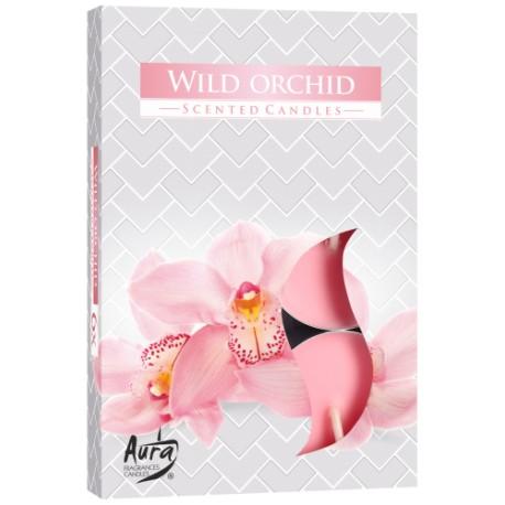 Podgrzewacze świeczki Dzika orchidea 6 sztuk