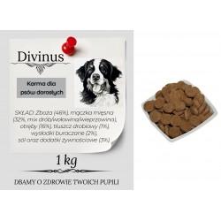 Karma Divinus Adult dla psów dorosłych 1kg