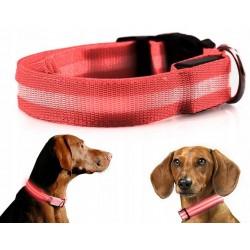 Obroża LED świecąca dla psa na baterie regulowana CZERWONA